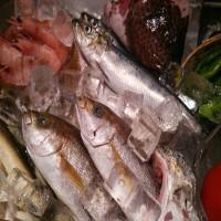[鮨家よしの] 夏の美味しい食材